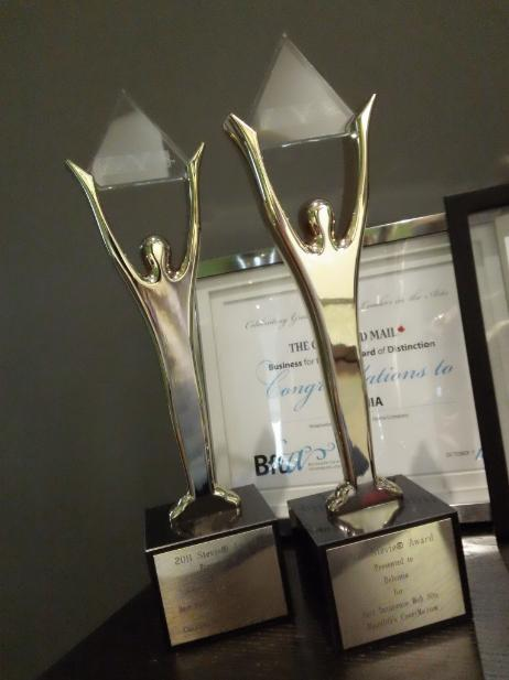 Our New Stevie Awards